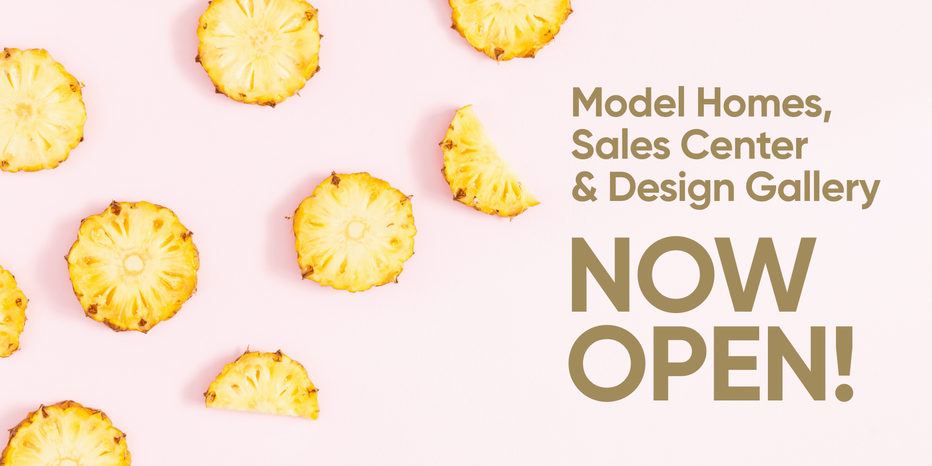 Model Homes, Sales Center & Design Gallery Are Now Open!