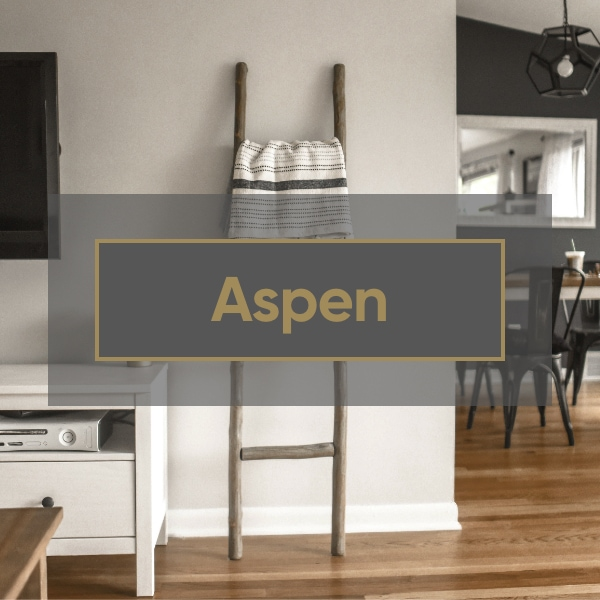 Aspen Interior Style
